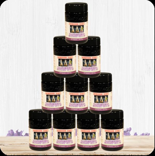 10er Set OPC 65 - Traubenkernextrakt für Erdmännchen und Erdfrauchen