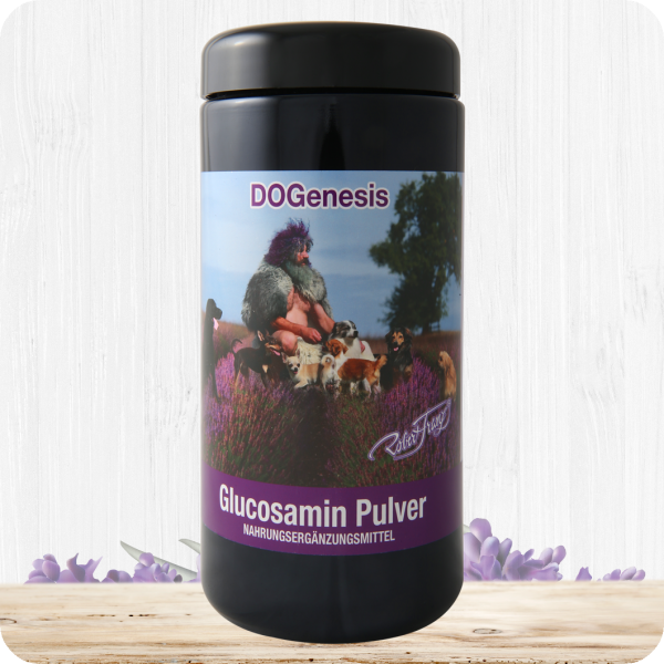 Glucosamin Pulver - 500g