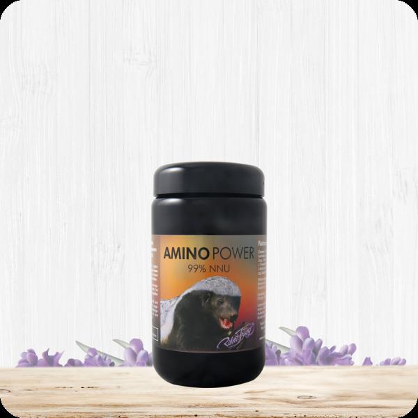 Amino Power, 180 Kapseln