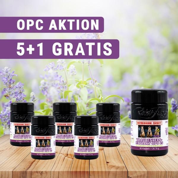 5er OPC 65 Set + mit 1 GRATIS OPC 65