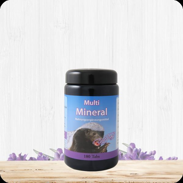 Multi Mineral, 180 Tabletten