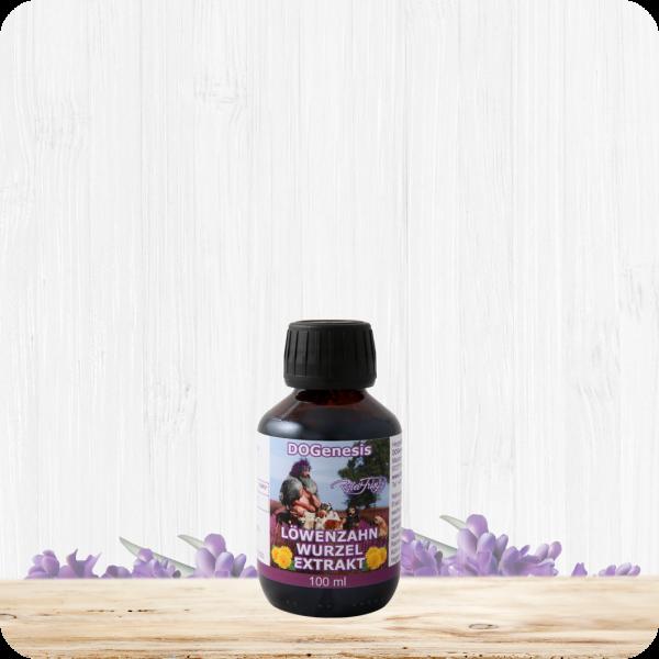 Löwenzahn – Wurzel – Extrakt – 100 ml
